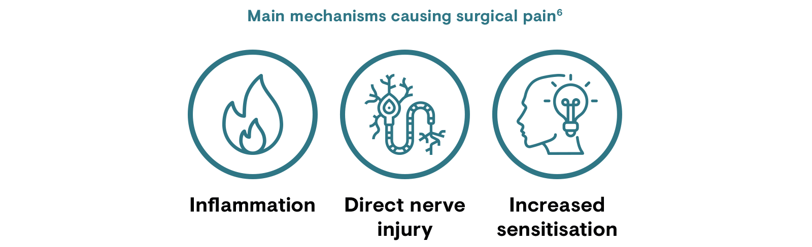 Main mechanisms causing surgical pain