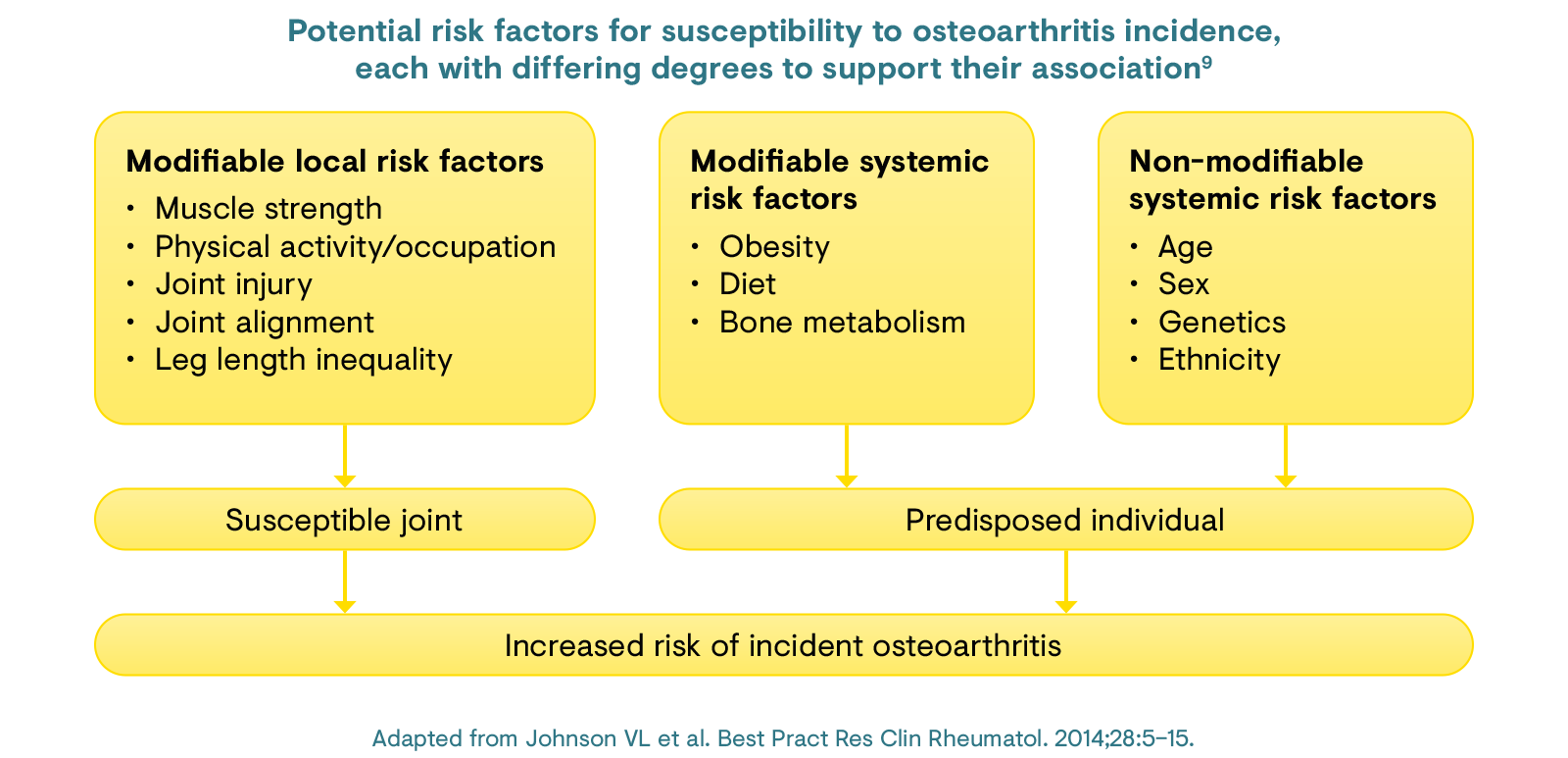 Potential risk factors for susceptibility to osteoarthritis incidence